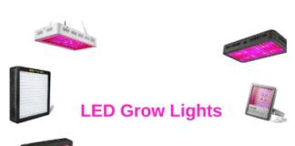 LED Grown Lights