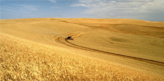 Agriculture Climate