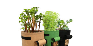 herb planting pots