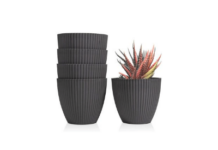Pots for Indoor Plants