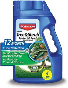 BioAdvanced 701700B 12-Month Tree and Shrub Protec
