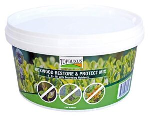 TOPBUXUS Boxwood Restore & Protect Mix