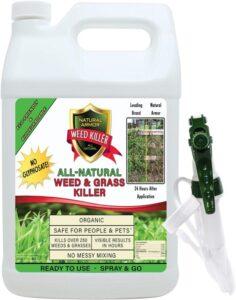 Natural Armor Weed Killer